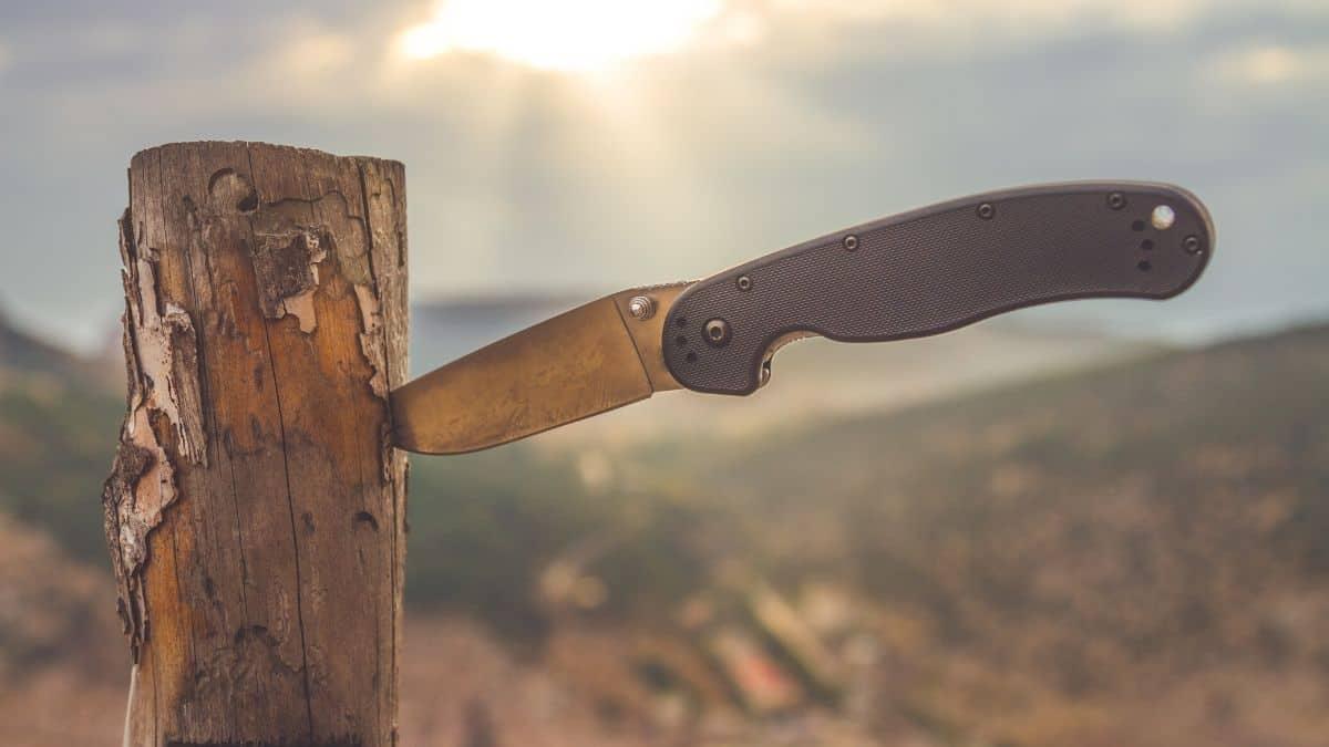Best Pocket Knife Sharpener Review