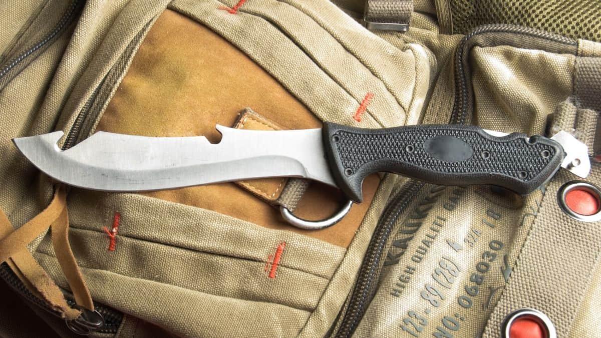 Best Gut Hook Knife for Hunting