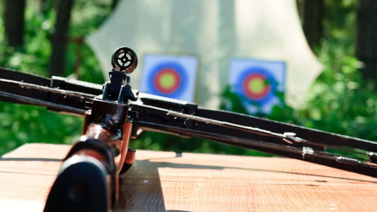 Best Youth Crossbow Reviews