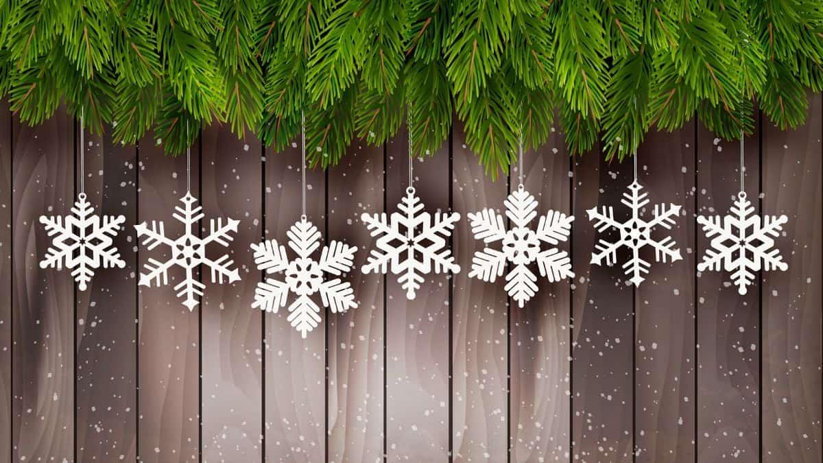Best Snowflake Multi Tool Reviews